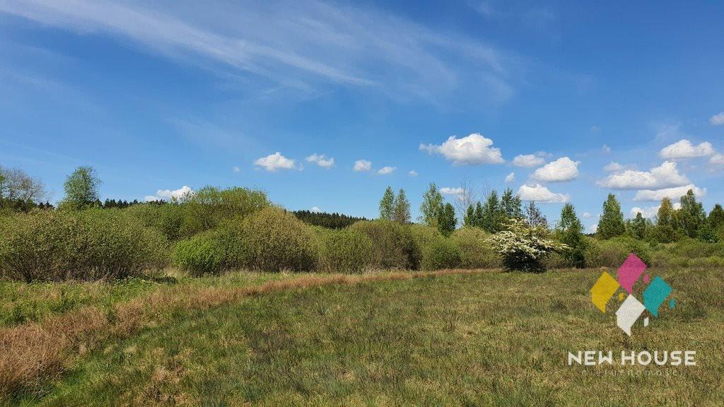 Działka rolna na sprzedaż Spręcowo  3000m2 Foto 5