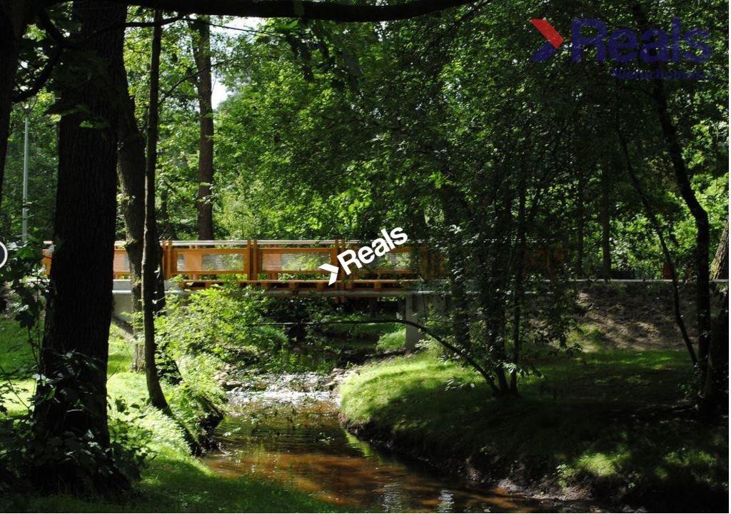 Działka leśna z prawem budowy na sprzedaż Konstancin-Jeziorna  3252m2 Foto 4