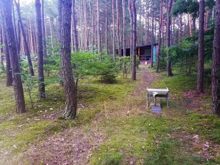 Dom na sprzedaż Łosie  50m2 Foto 2