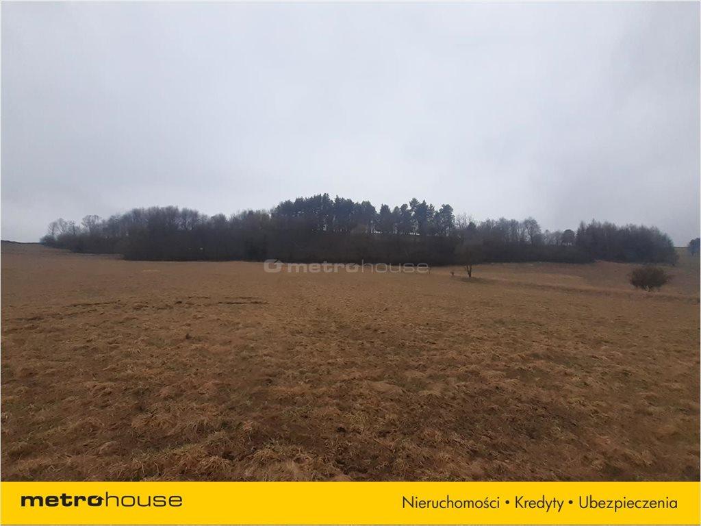 Działka rolna na sprzedaż Rzepedź, Komańcza  9300m2 Foto 6