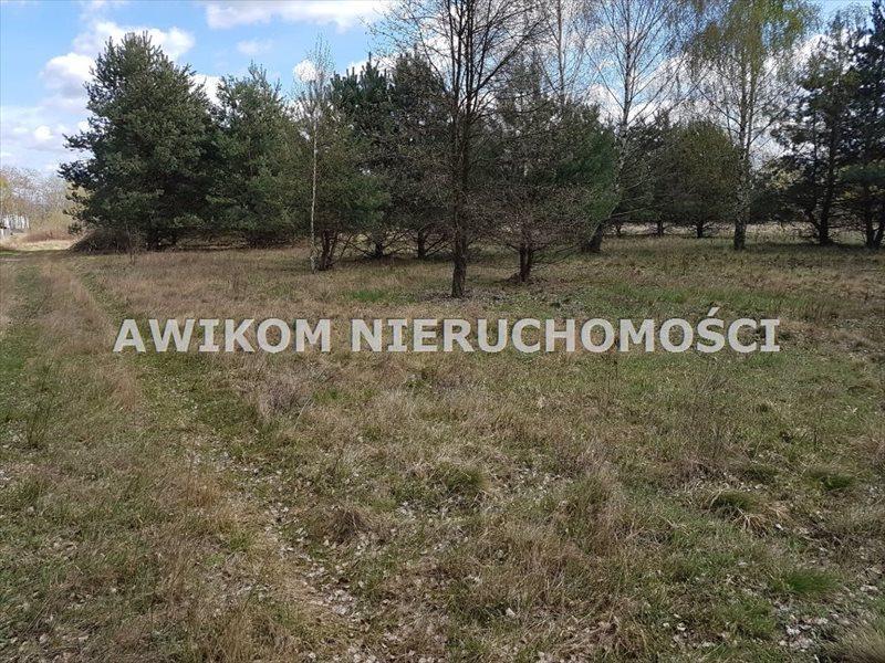 Działka budowlana na sprzedaż Jaktorów, Jaktorów Kolonia  1100m2 Foto 6