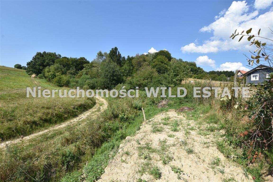 Działka rolna na sprzedaż Olszanica, Orelec  2489m2 Foto 3