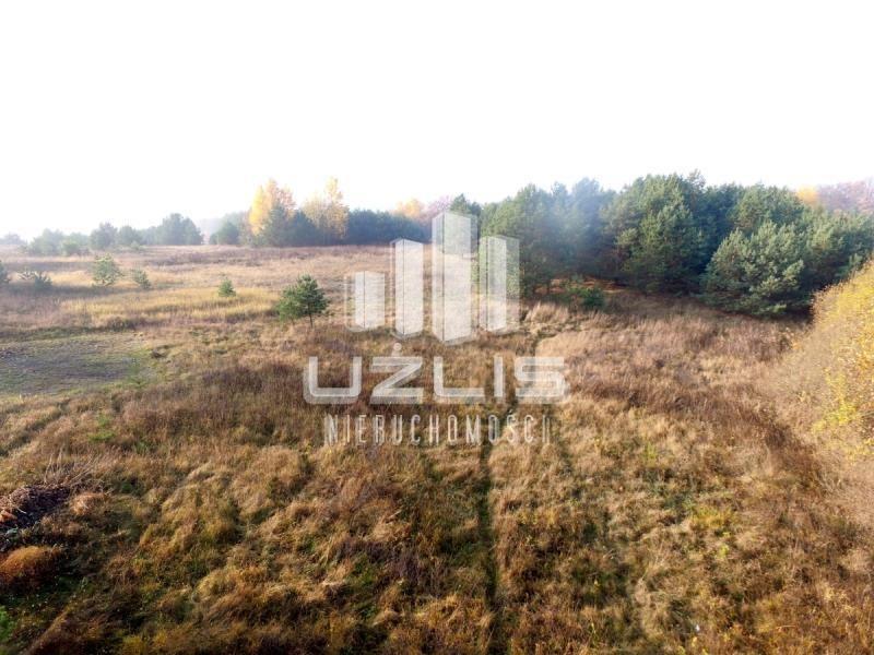 Działka rolna na sprzedaż Tczew  40600m2 Foto 3