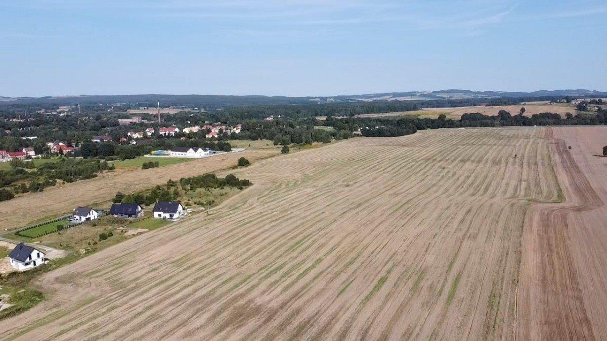 Działka rolna na sprzedaż Gryfów Śląski, Rzeczna  22430m2 Foto 5