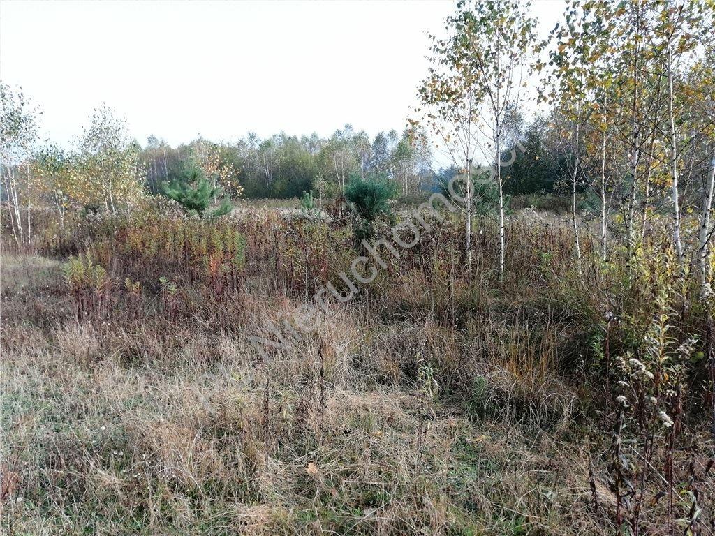 Działka rolna na sprzedaż Rakówiec  3896m2 Foto 8