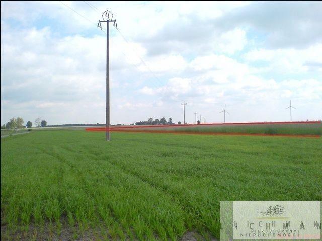 Działka rolna na sprzedaż Bogucice  16000m2 Foto 2