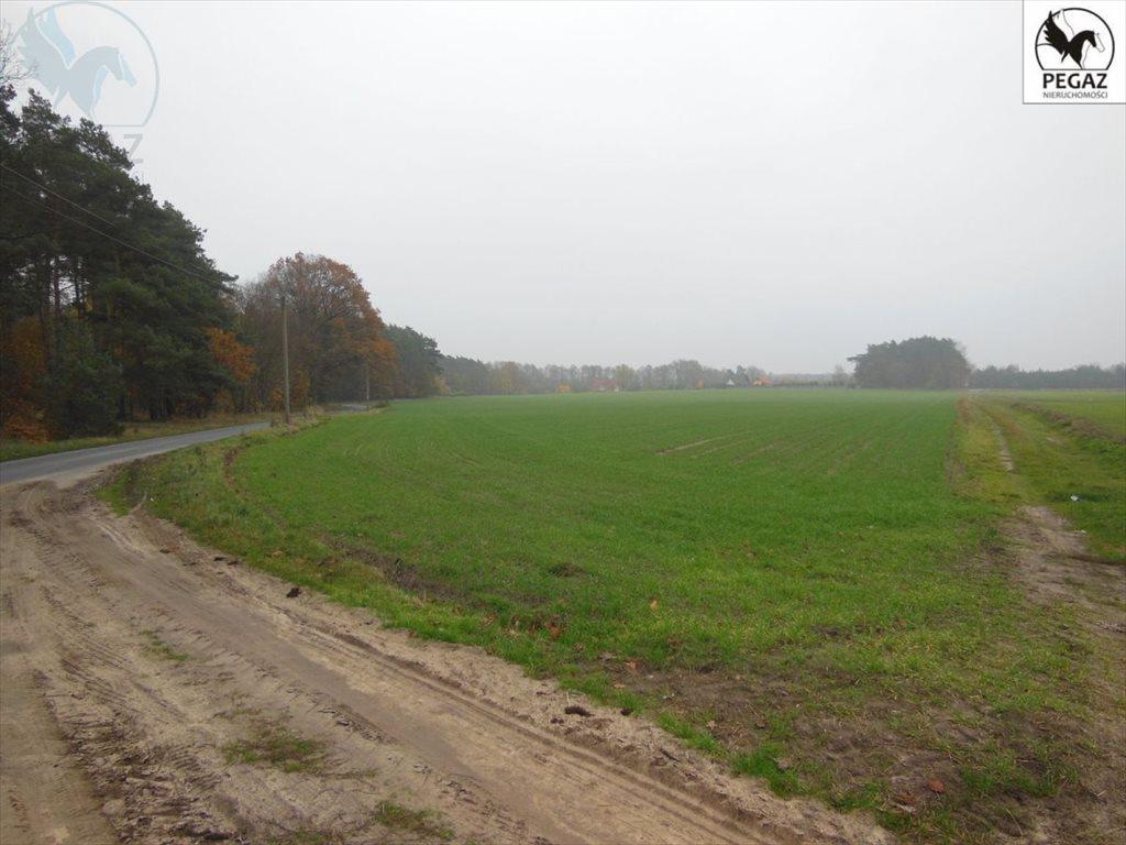 Działka budowlana na sprzedaż Lechlin  3000m2 Foto 4