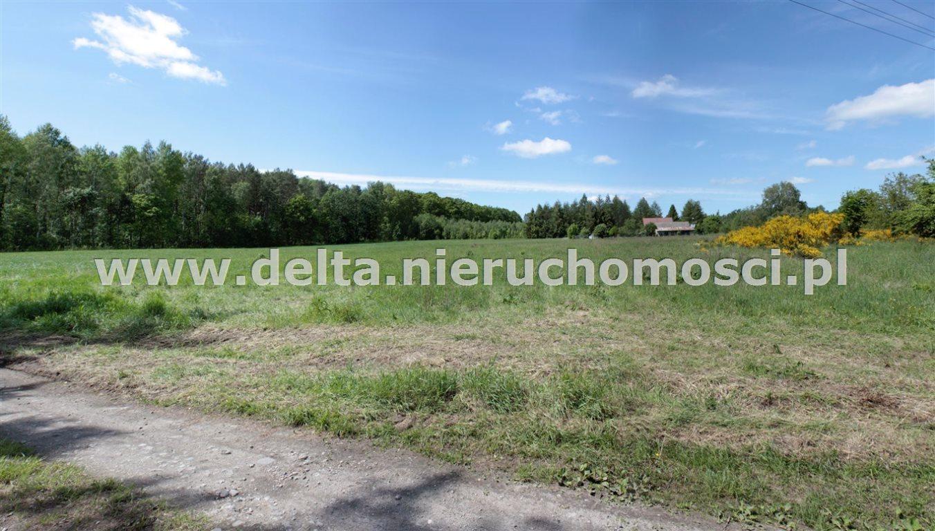 Działka budowlana na sprzedaż Sycewice  17500m2 Foto 1