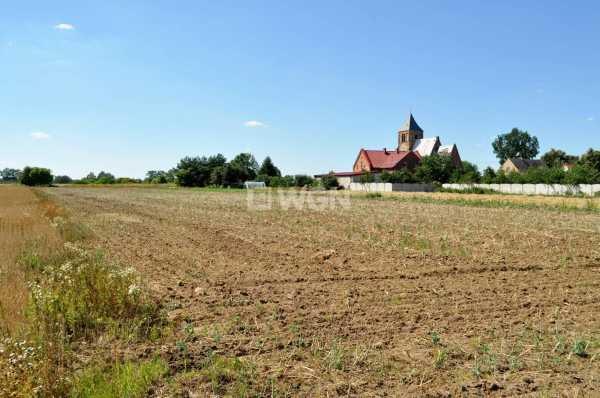 Działka rolna na sprzedaż Piersna, Piersna  4400m2 Foto 4