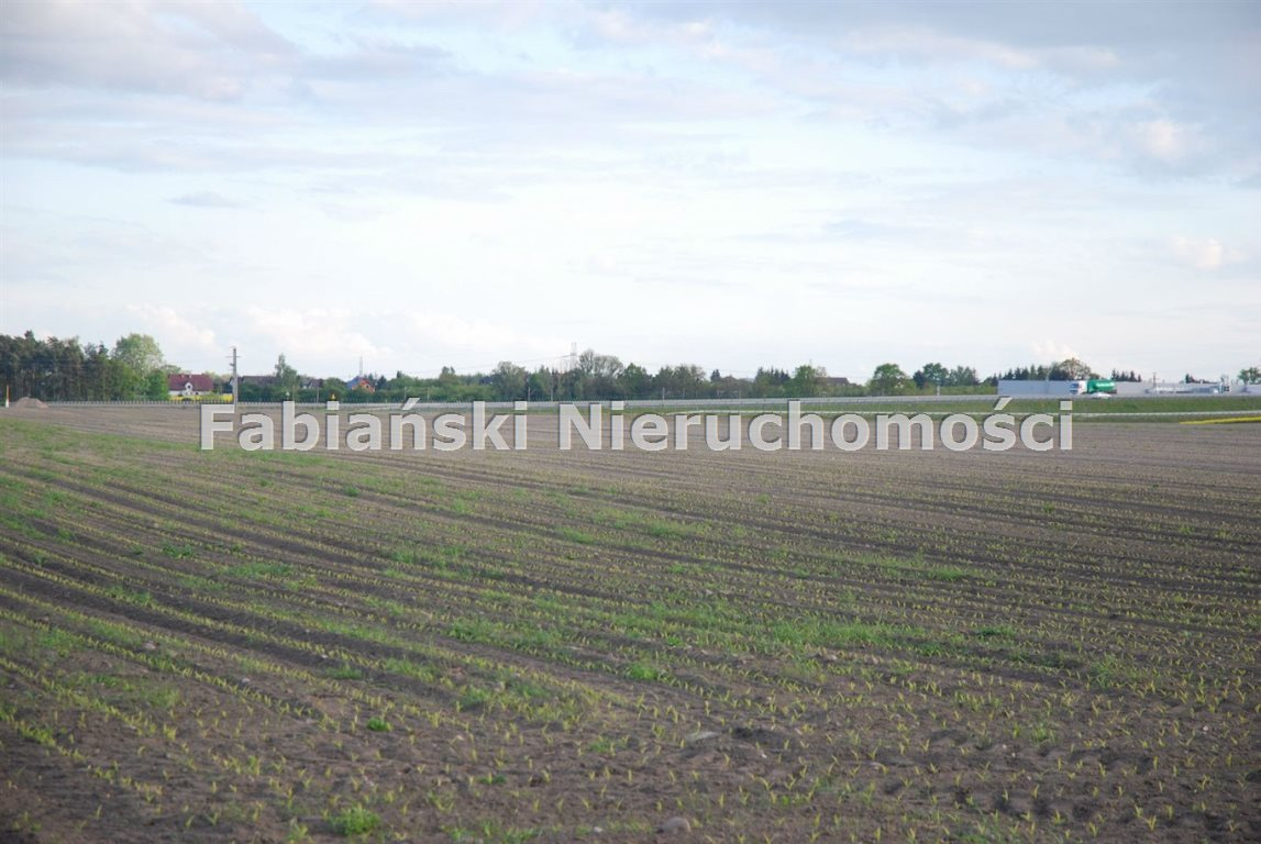 Działka budowlana na sprzedaż Bytkowo, Agrestowa  24007m2 Foto 6