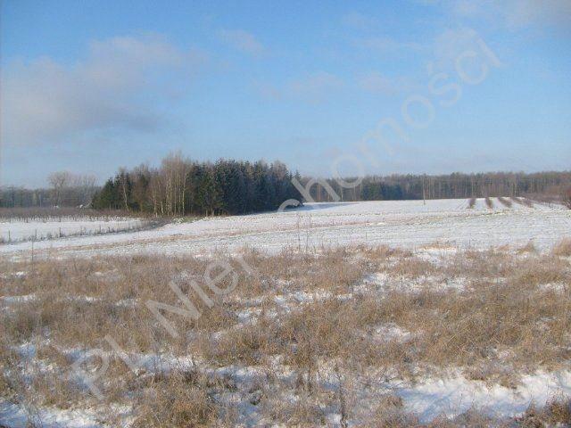 Działka rolna na sprzedaż Mszczonów  9700m2 Foto 5