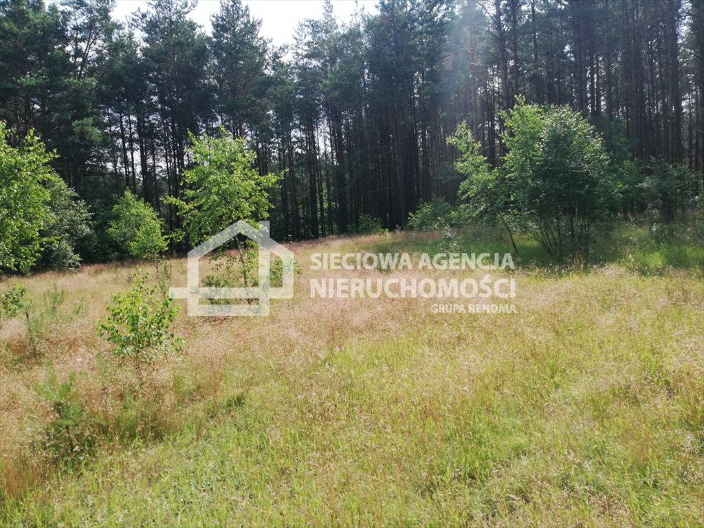Działka rolna na sprzedaż Załęże  6400m2 Foto 4