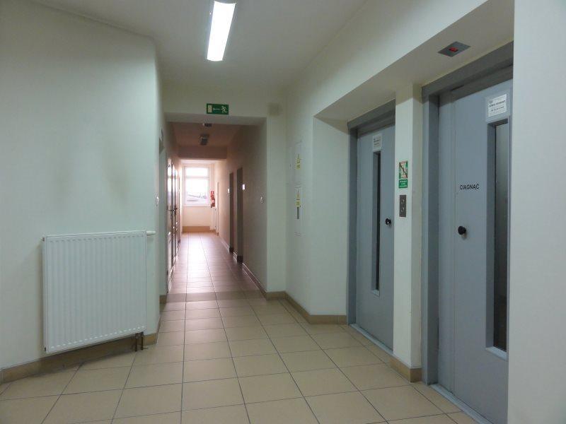 Lokal użytkowy na sprzedaż Wrocław, Psie Pole  3770m2 Foto 9
