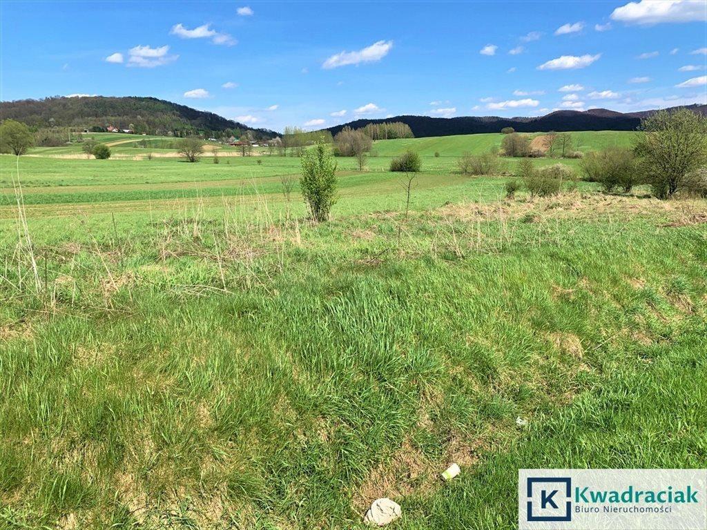 Działka rolna na sprzedaż Trepcza, Kościelna  17m2 Foto 3