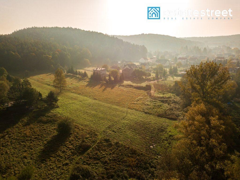 Działka inwestycyjna na sprzedaż Kraków, Tyniec, Tyniec, Skołczanka  9600m2 Foto 5