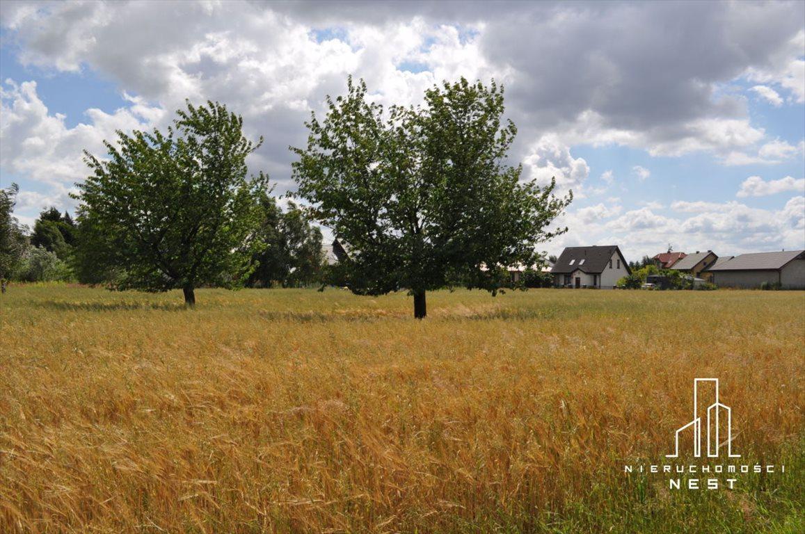 Działka budowlana na sprzedaż Kórnik, 3 km od centrum Kórnika  1051m2 Foto 3