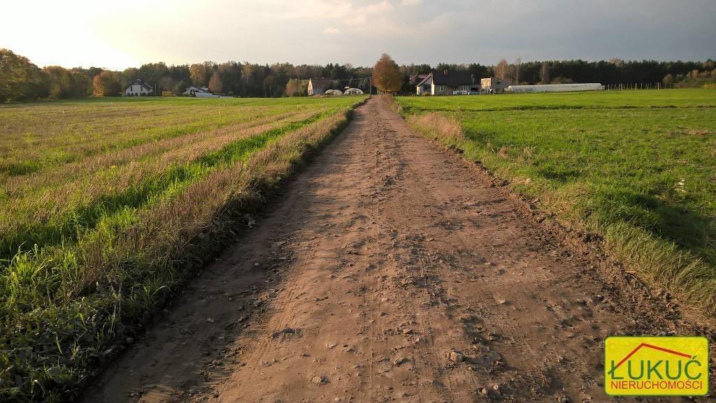 Działka rolna na sprzedaż Żołędowo, Pod Lasem  875m2 Foto 5