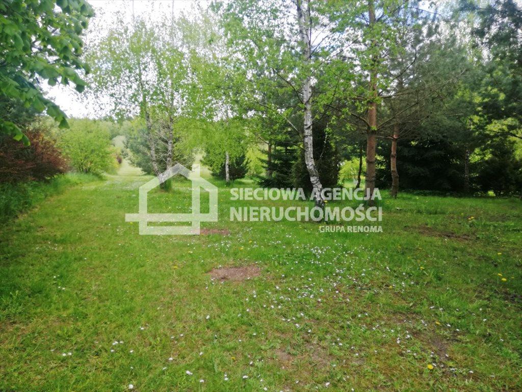 Działka leśna na sprzedaż Żuławka  1730m2 Foto 3