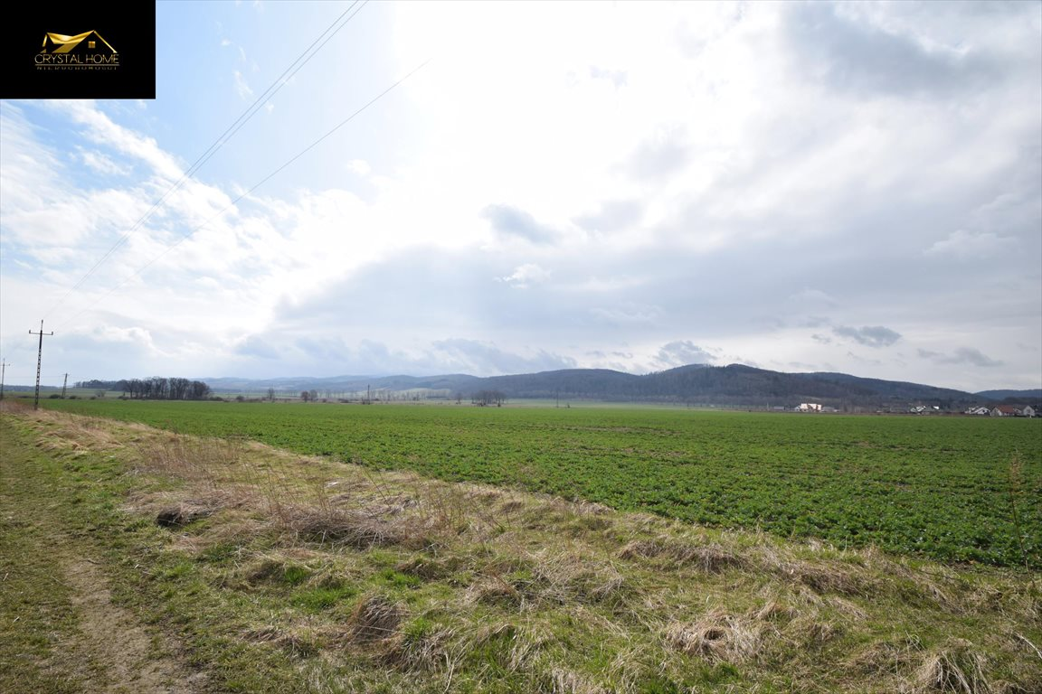 Działka rolna na sprzedaż Burkatów  23600m2 Foto 5
