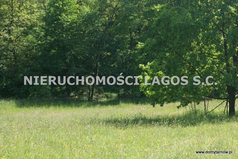 Działka inna na sprzedaż Tarnów, Zawada  1000m2 Foto 2