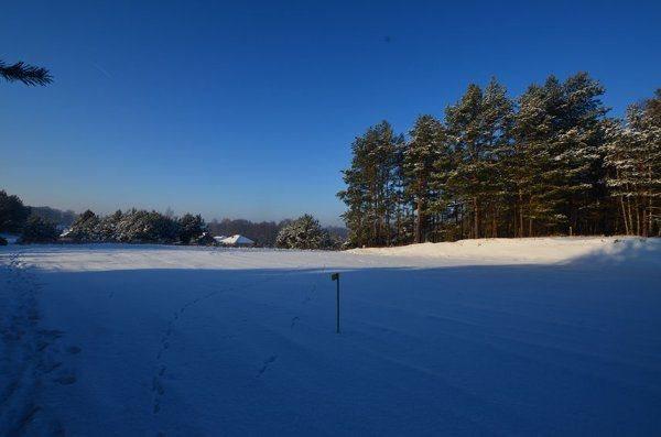 Działka leśna z prawem budowy na sprzedaż Niewodnica Kościelna  2003m2 Foto 1