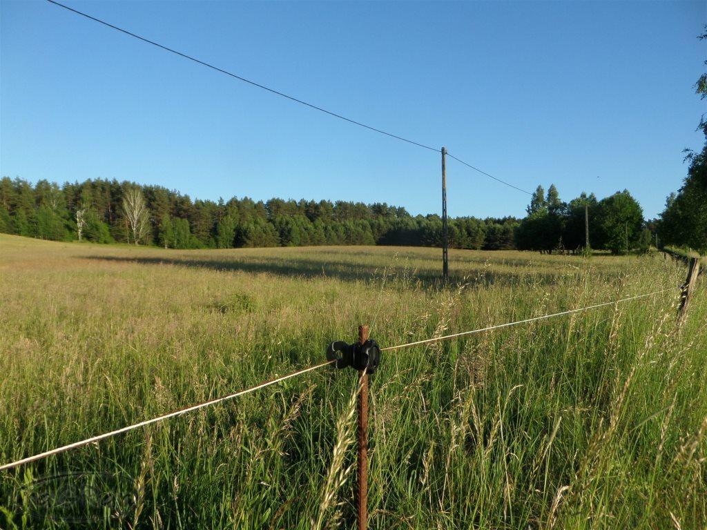 Działka rolna na sprzedaż Stare Kawkowo  3206m2 Foto 7