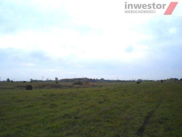 Działka rolna na sprzedaż Szczecin, Bukowo  5293m2 Foto 3