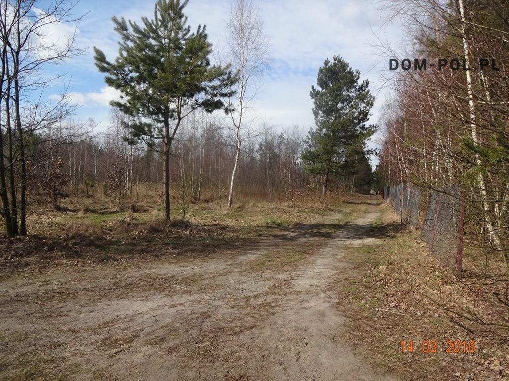Działka budowlana na sprzedaż Stoczek  10066m2 Foto 4