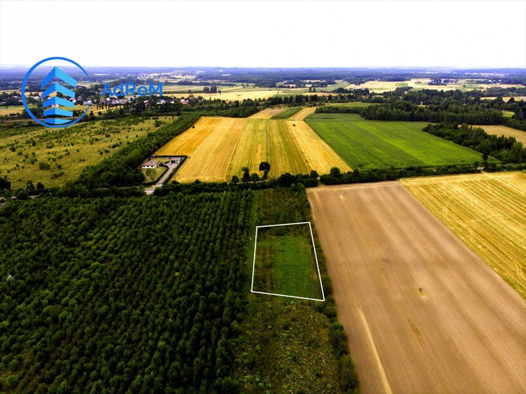 Działka rolna na sprzedaż Baciuty  3008m2 Foto 2