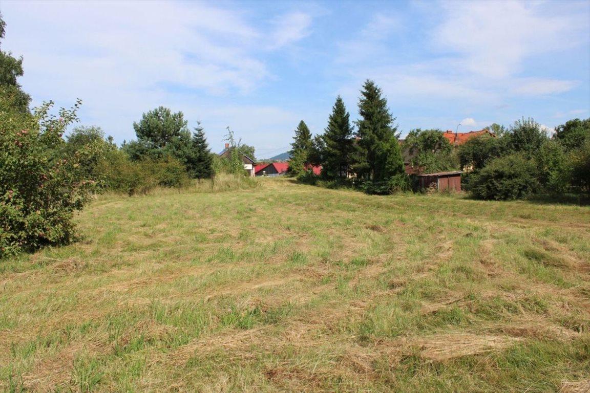 Działka budowlana na sprzedaż Żywiec  2676m2 Foto 3