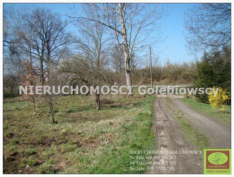 Działka inna na sprzedaż Jędrzychowice  3952m2 Foto 6