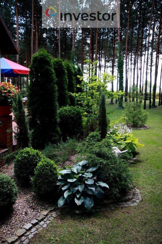 Działka leśna na sprzedaż Słowak  6296m2 Foto 7