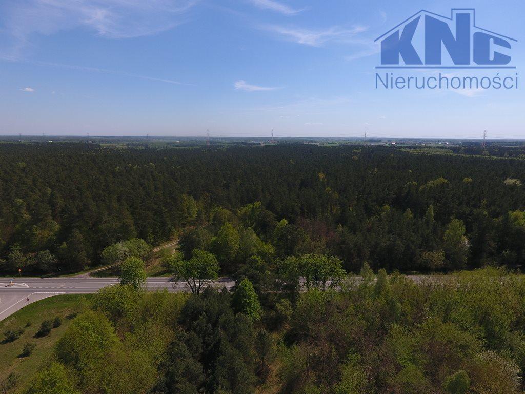Działka leśna na sprzedaż Laskowiec  4200m2 Foto 4