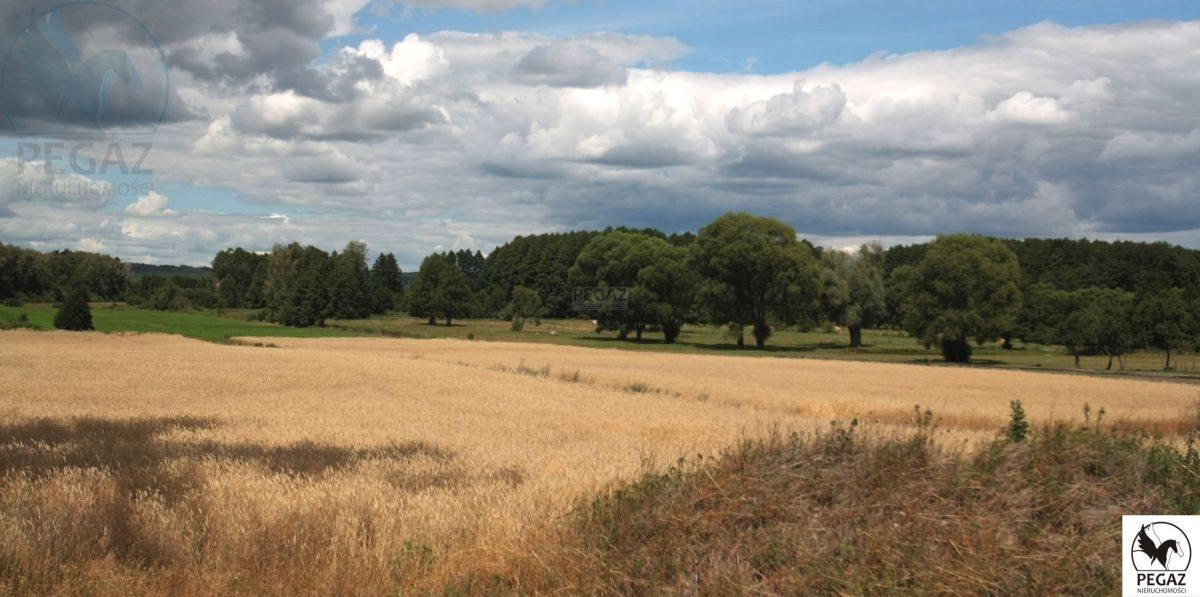 Działka rolna na sprzedaż Milcz, Holna / Zajęcza  6175m2 Foto 1