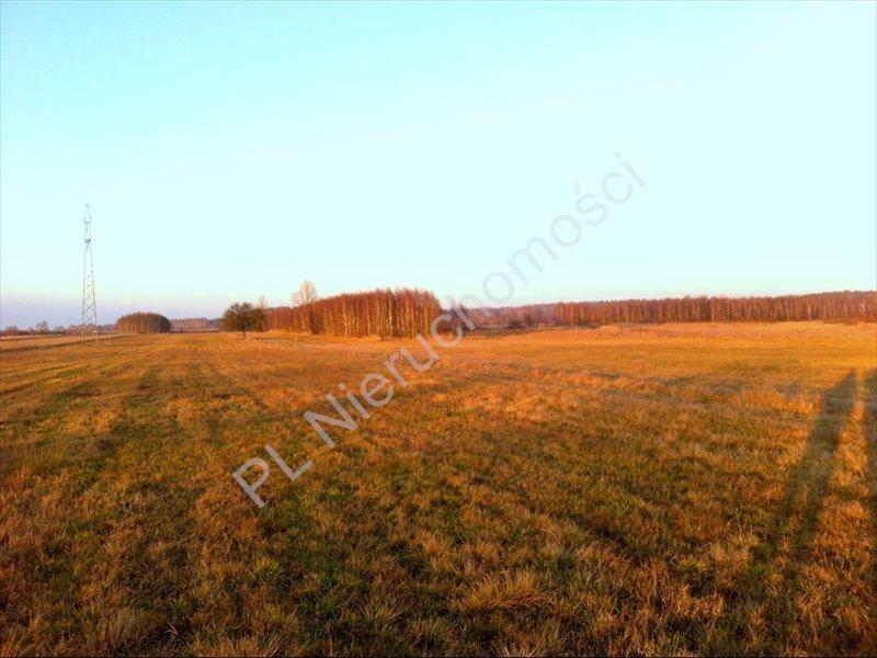 Działka rolna na sprzedaż Tyborów  20000m2 Foto 6