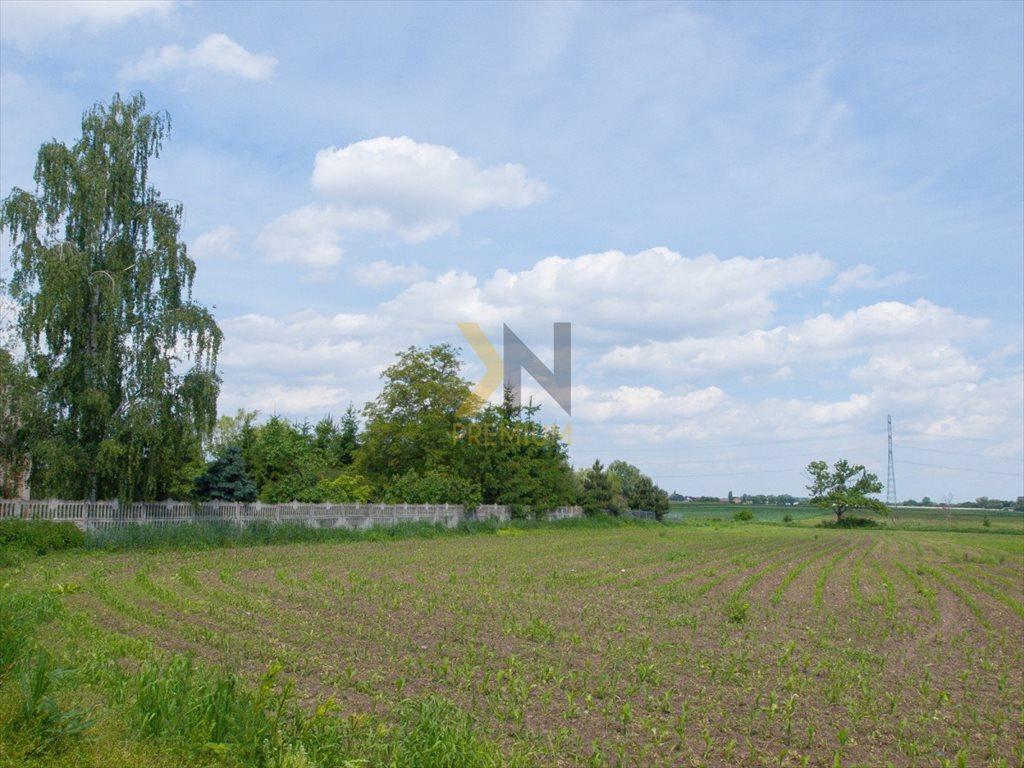 Działka budowlana na sprzedaż Polakowice, Jana III Sobieskiego  10900m2 Foto 3