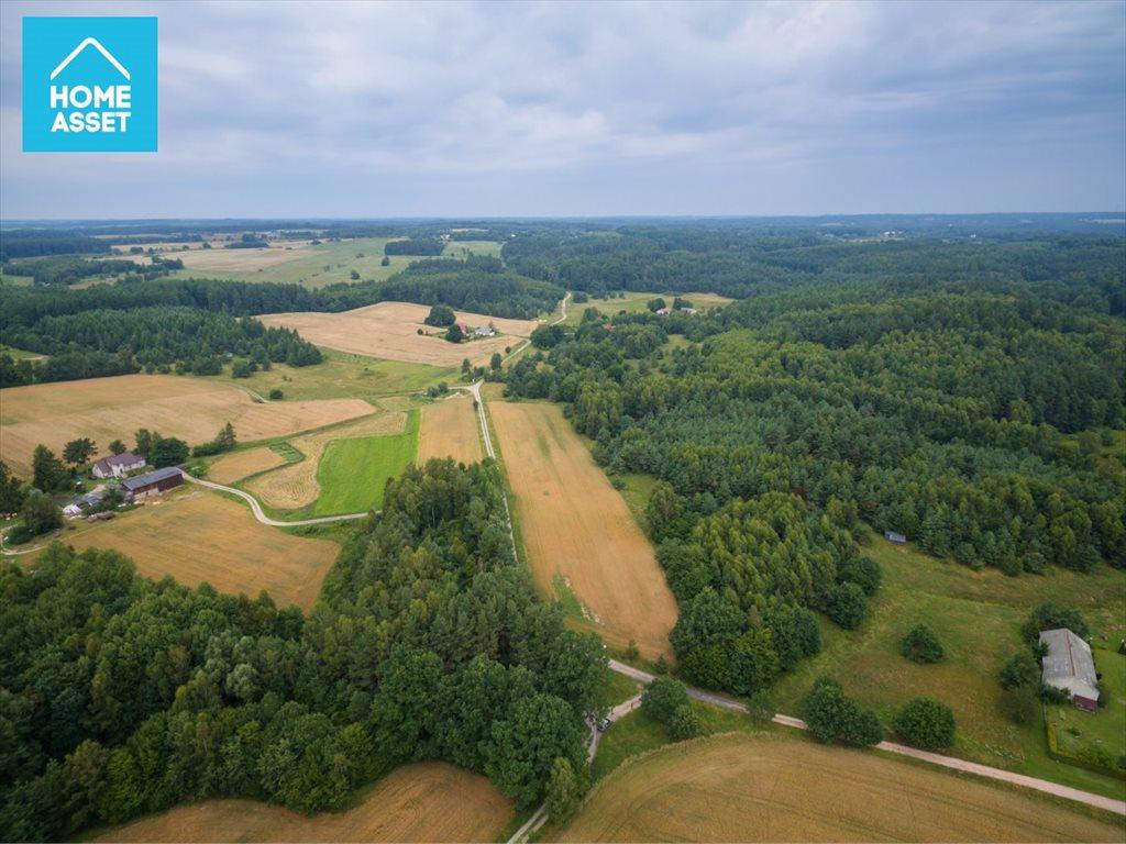Działka rolna na sprzedaż Błotnia  9300m2 Foto 7
