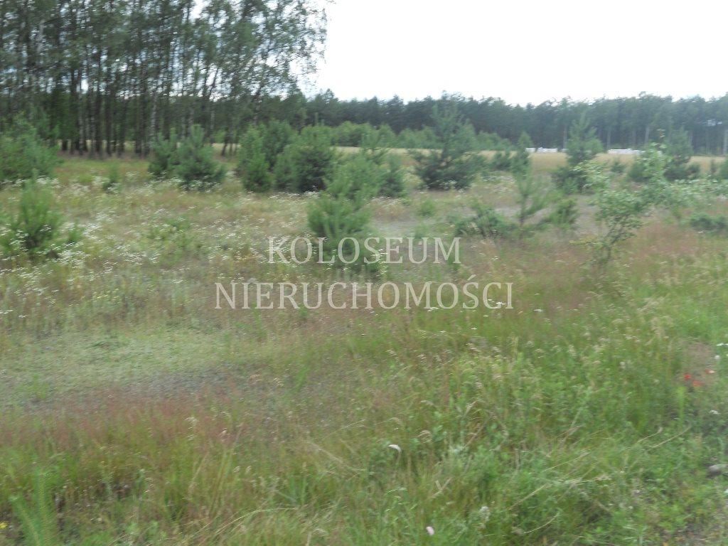 Działka budowlana na sprzedaż Toruń  3046m2 Foto 1