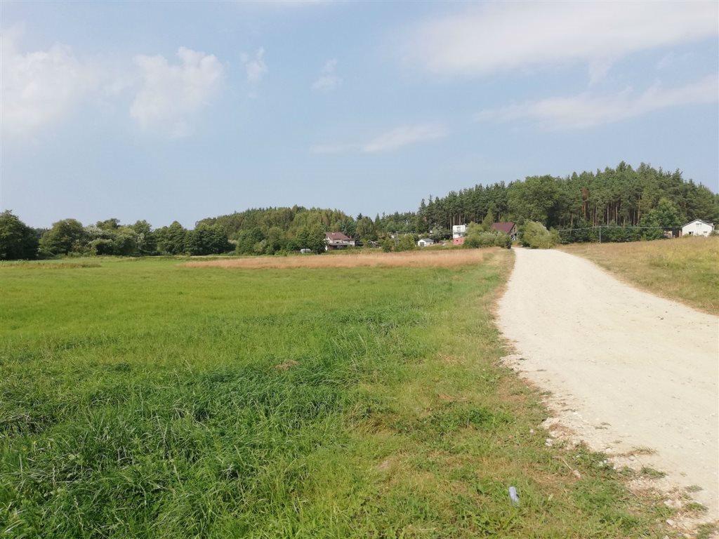 Działka rolna na sprzedaż Luzino, Zgody  12593m2 Foto 5