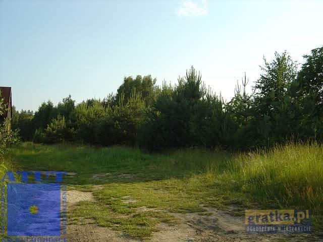Działka leśna na sprzedaż Gliwice, Ok.rudy  10000m2 Foto 1