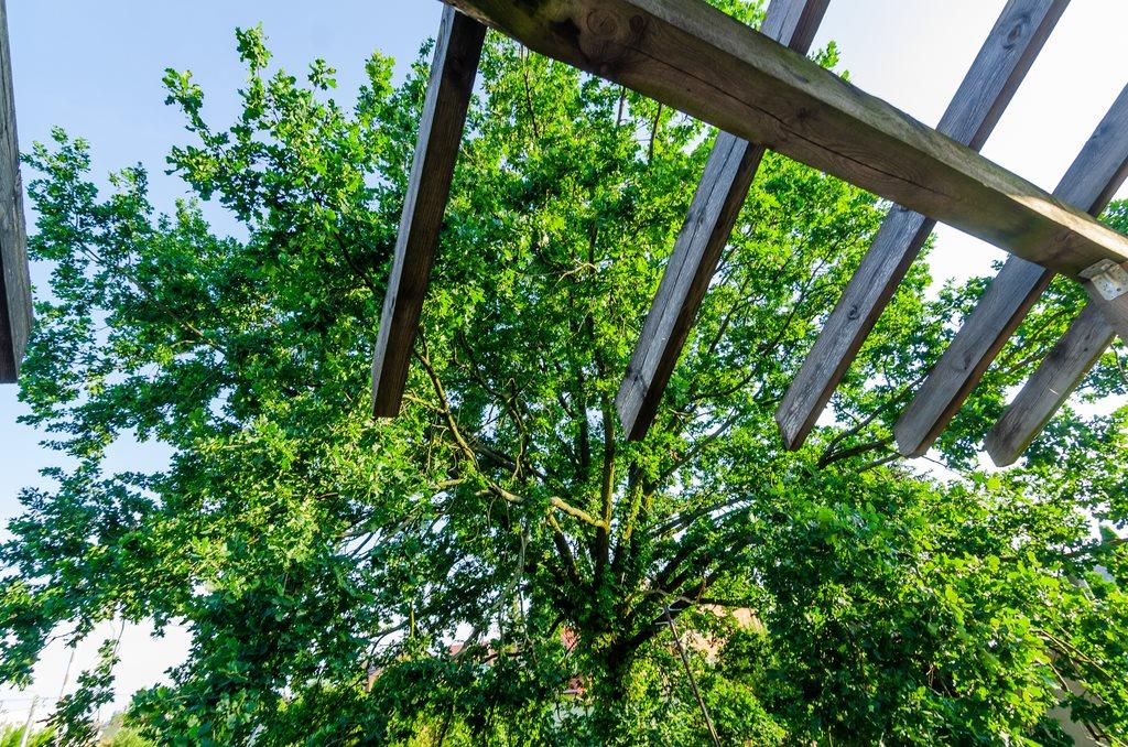 Dom na sprzedaż Ząbki  467m2 Foto 11