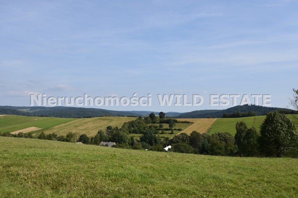 Działka rolna na sprzedaż Baligród, Zahoczewie  180184m2 Foto 6