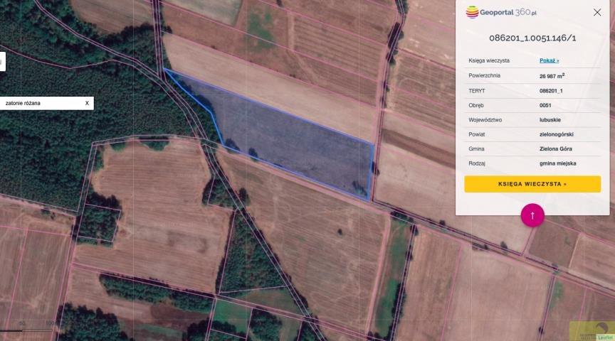 Działka rolna na sprzedaż Zielona Góra, Zatonie-Różana  26987m2 Foto 5