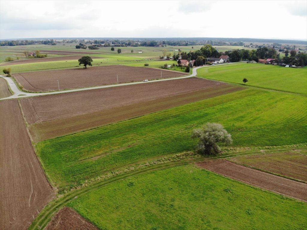 Działka rolna na sprzedaż Wola Batorska  3500m2 Foto 2