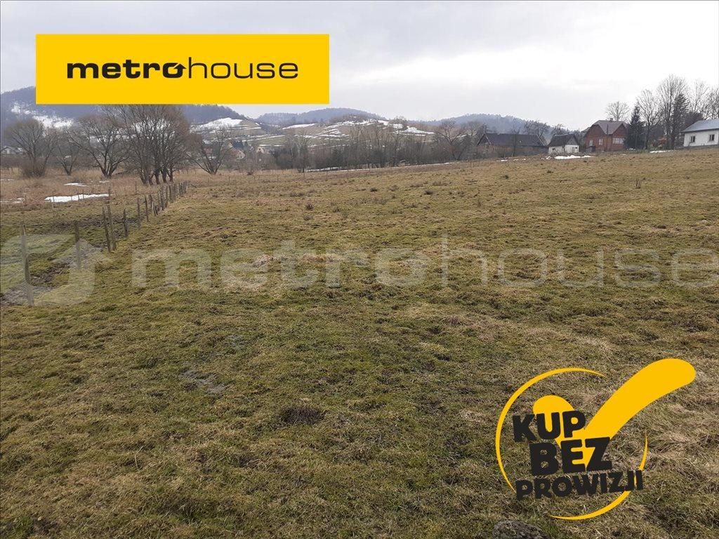 Działka rolna na sprzedaż Terka, Solina  7800m2 Foto 1