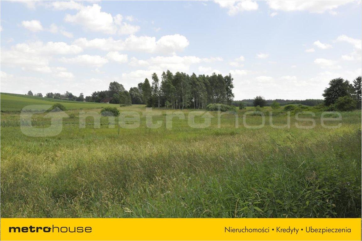 Działka rolna na sprzedaż Stryjkowo, Lidzbark Warmiński  14915m2 Foto 6