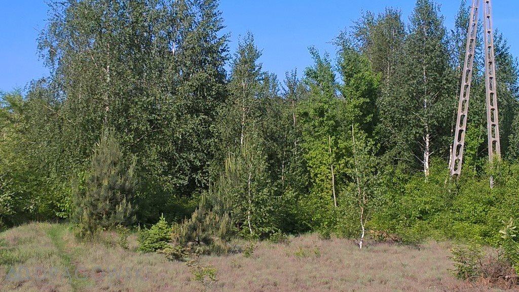 Działka rolna na sprzedaż Łękawica  11842m2 Foto 5