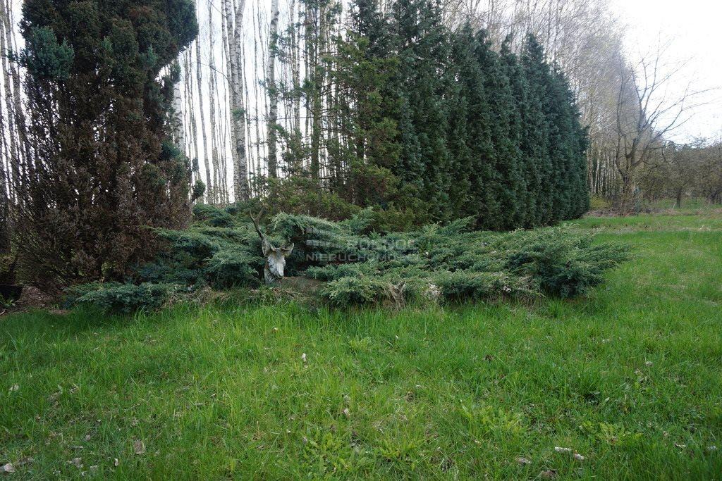 Działka siedliskowa na sprzedaż Żytowice  7412m2 Foto 7