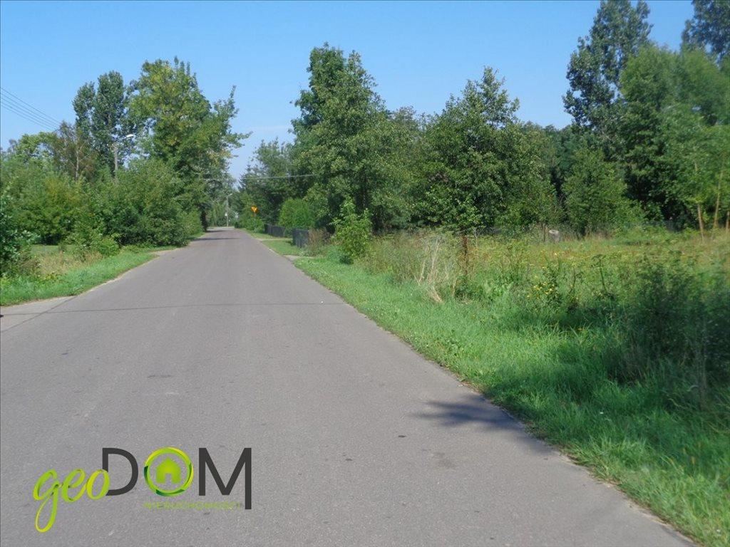 Działka rolna na sprzedaż Terespol  5927m2 Foto 6
