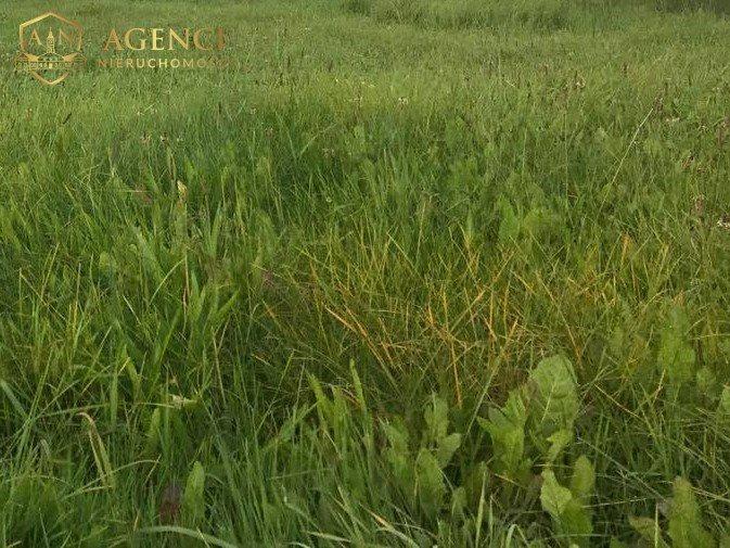 Działka rolna na sprzedaż Gliniszcze Wielkie  3195m2 Foto 1